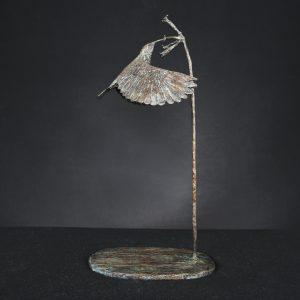 Sunbird in Flower