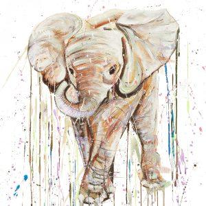 Calf Elephant III